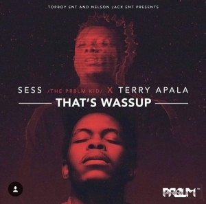 Sess - Thats Wassup Ft. Terry Apala
